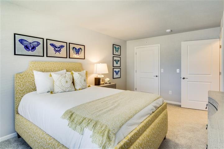 Large Second or Guest Bedroom